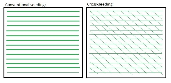 Cross-seeding illustration